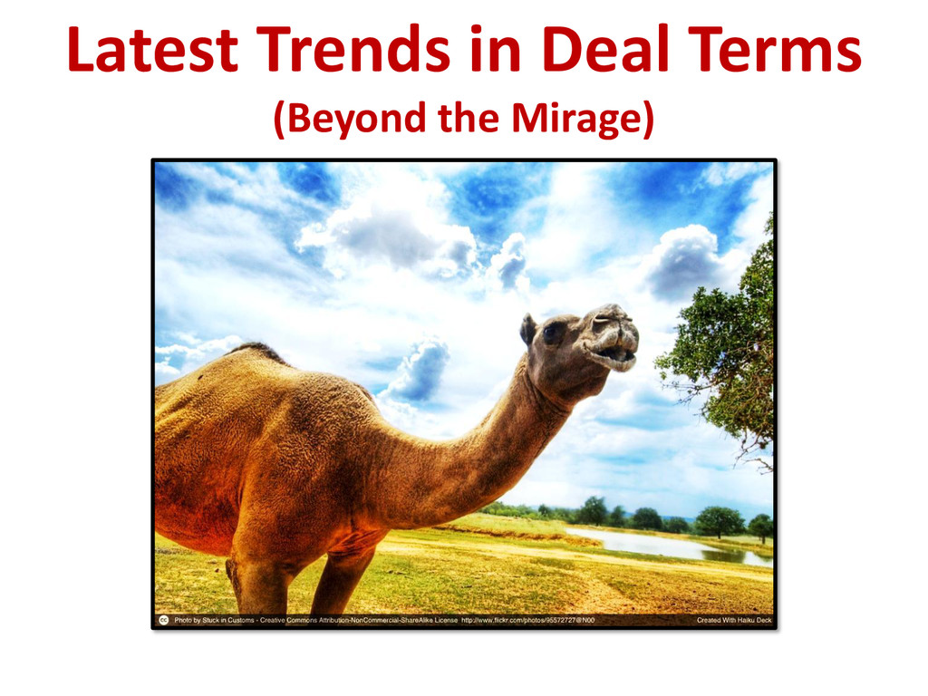 Latest Trends in Deal Terms (Beyond the Mirage)