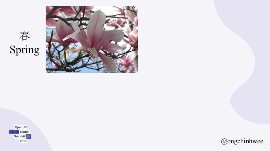 @ongchinhwee 春 Spring