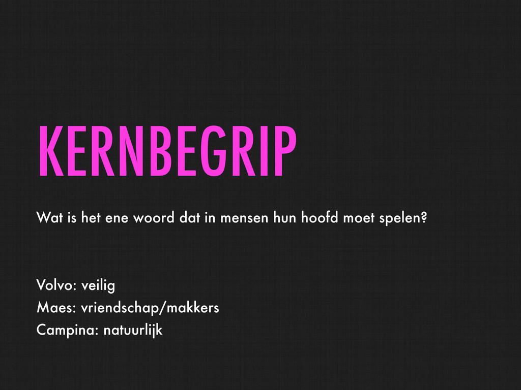 KERNBEGRIP Wat is het ene woord dat in mensen h...