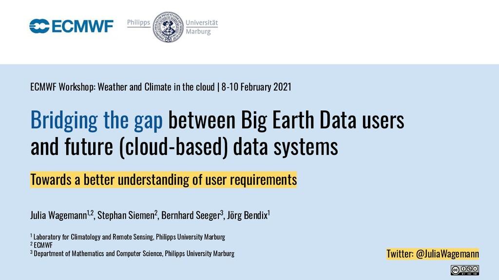 Bridging the gap between Big Earth Data users a...