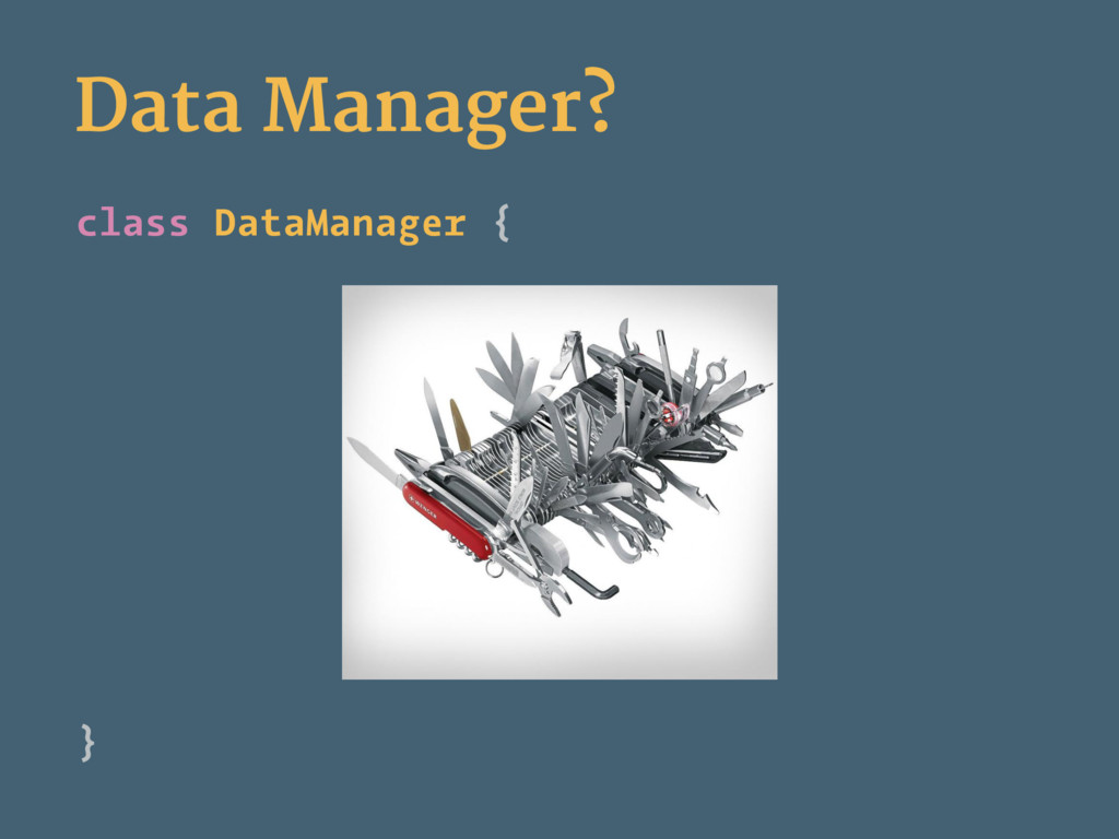 Data Manager? class DataManager { }