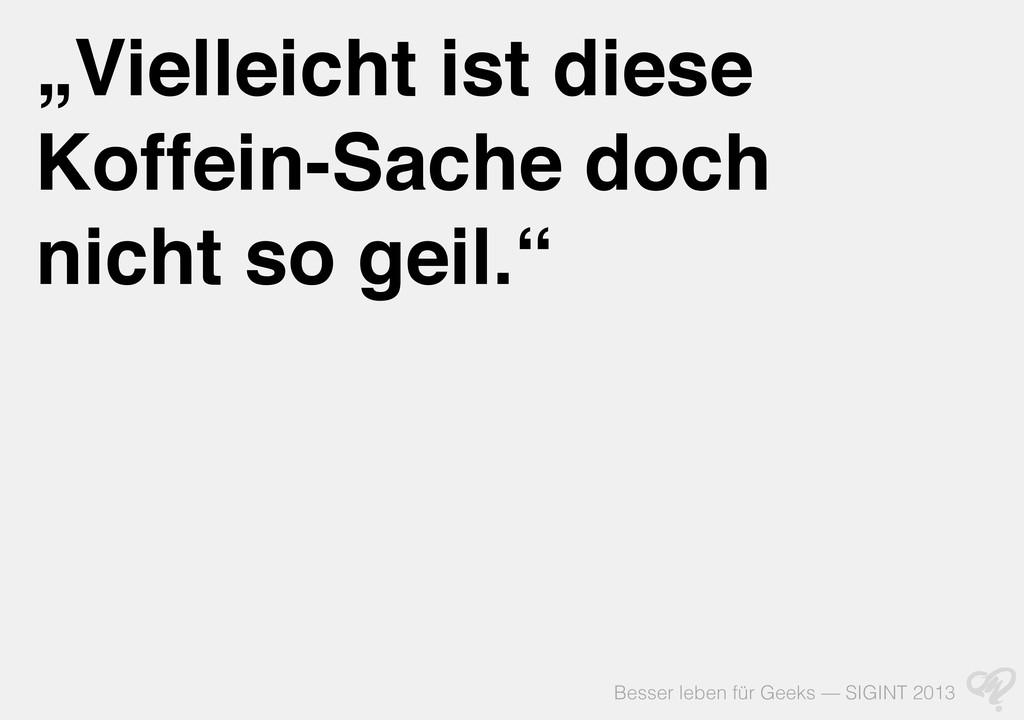 """Besser leben für Geeks — SIGINT 2013 """"Vielleich..."""