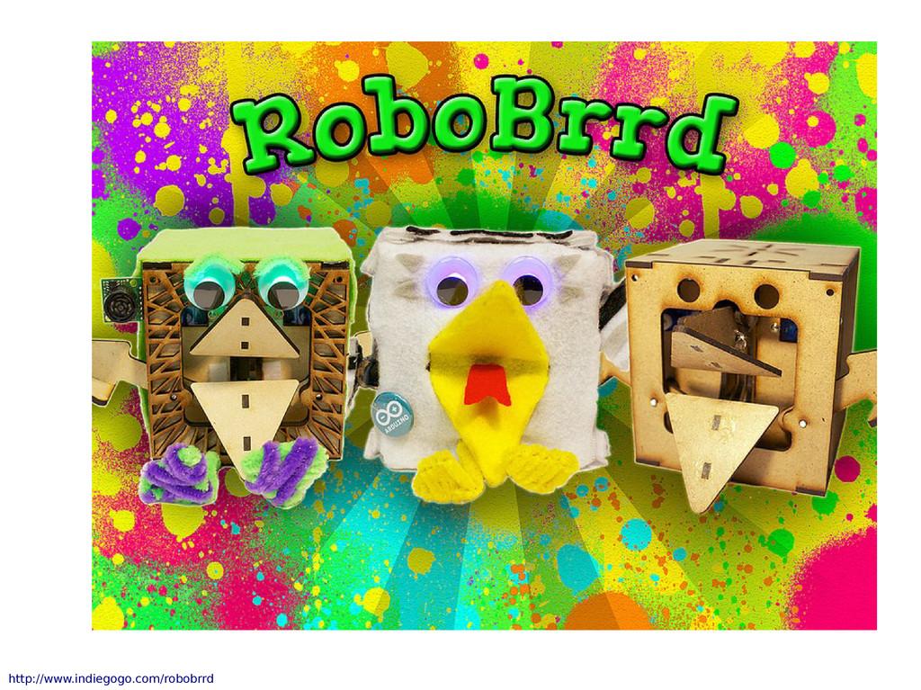 http://www.indiegogo.com/robobrrd