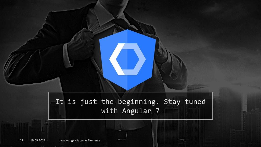 19.09.2018 JavaLounge - Angular Elements 49 It ...