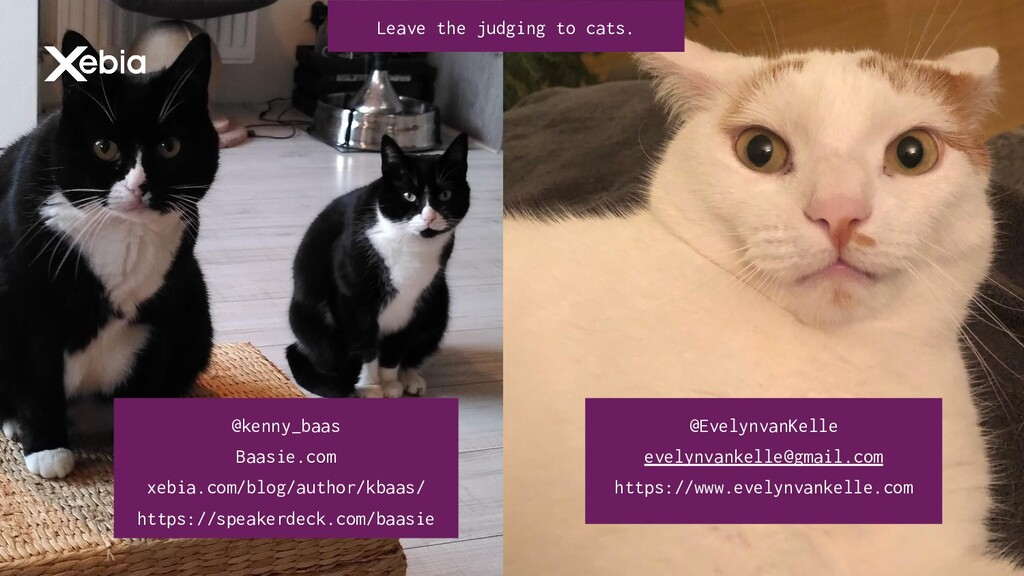 @kenny_baas #CatTax @kenny_baas Baasie.com xebi...