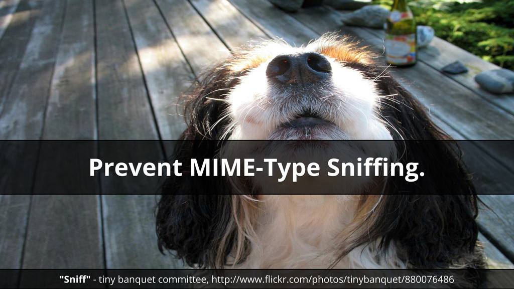 """""""Sniff"""" - tiny banquet committee, http://www.fl..."""
