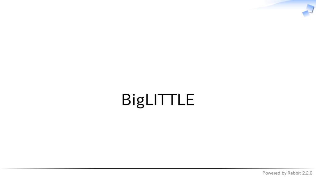 Powered by Rabbit 2.2.0   BigLITTLE