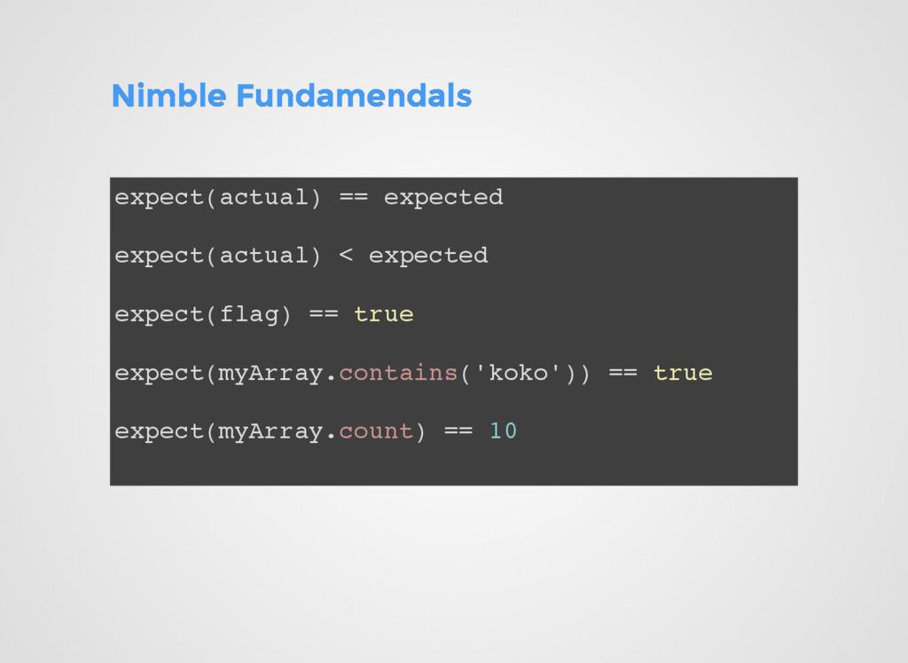 Nimble Fundamendals Nimble Fundamendals expect(...
