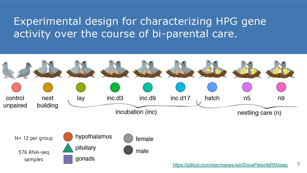 Experimental design for characterizing HPG gene...