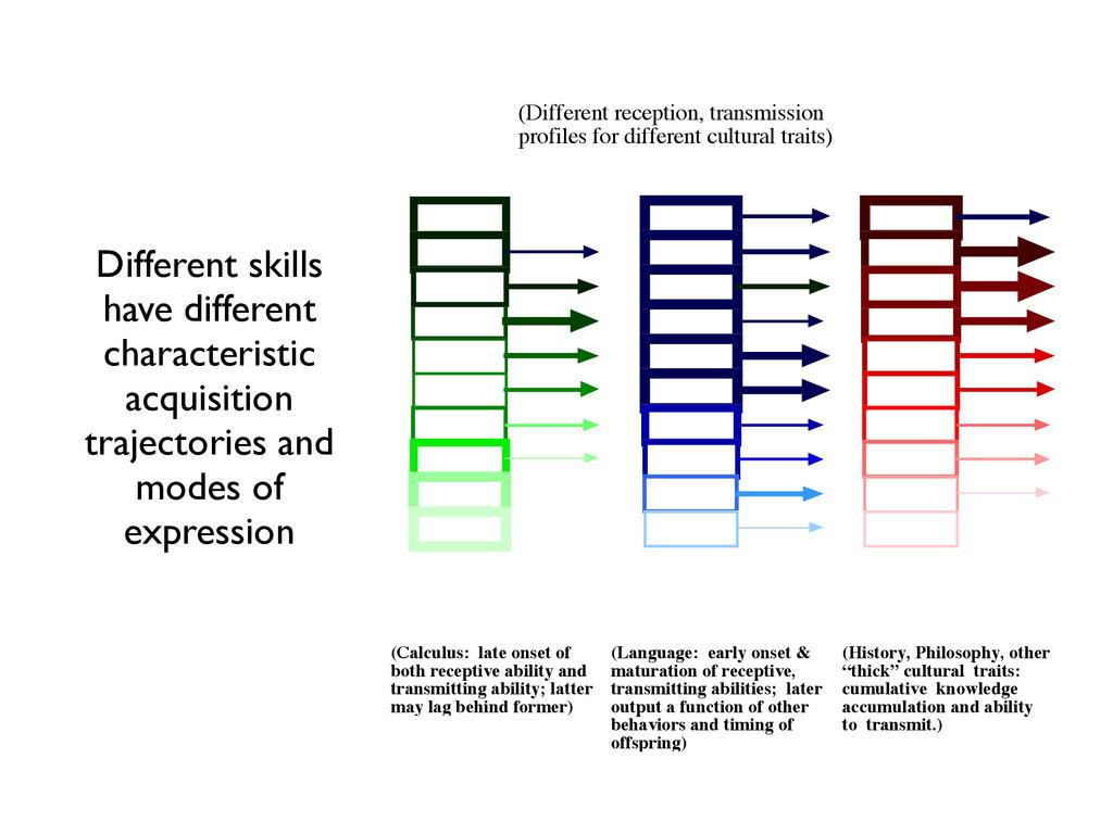 (Language: early onset & maturation of receptiv...
