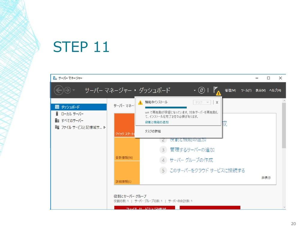 STEP 11 20