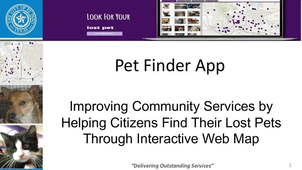 """Delivering Outstanding Services"" Pet Finder Ap..."