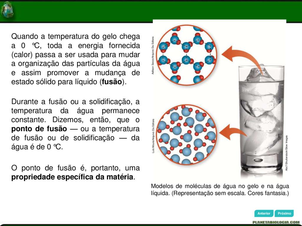 Adilson Secco/Arquivo Da Editora Luís Moura/Arq...