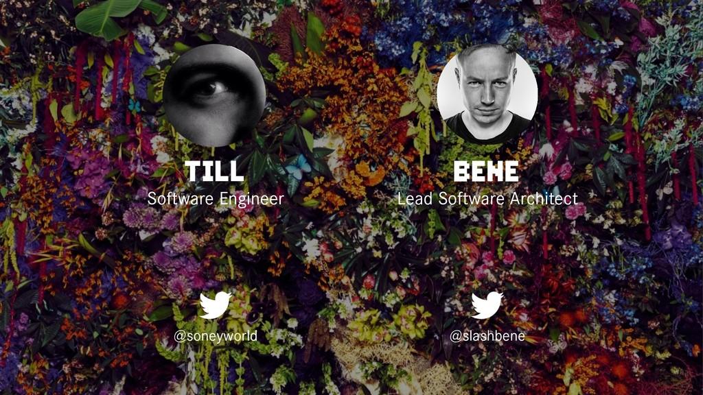 TILL Software Engineer @soneyworld BENE Lead So...