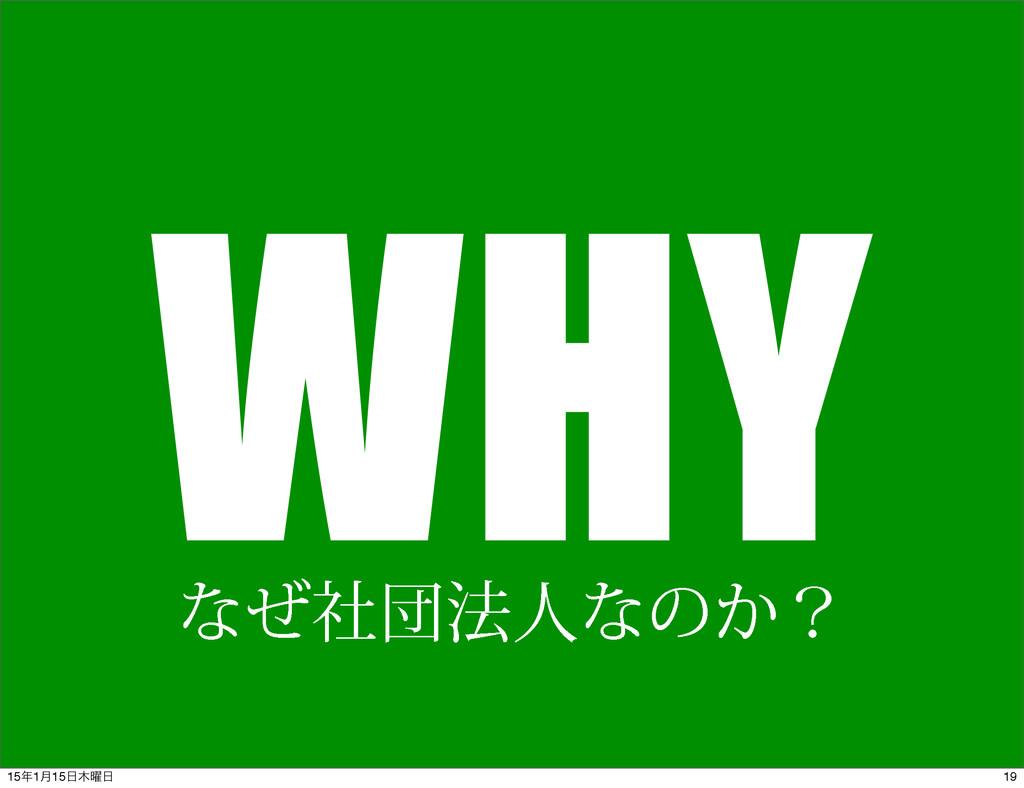 WHY ͳͥࣾஂ๏ਓͳͷ͔ʁ 19 151݄15༵