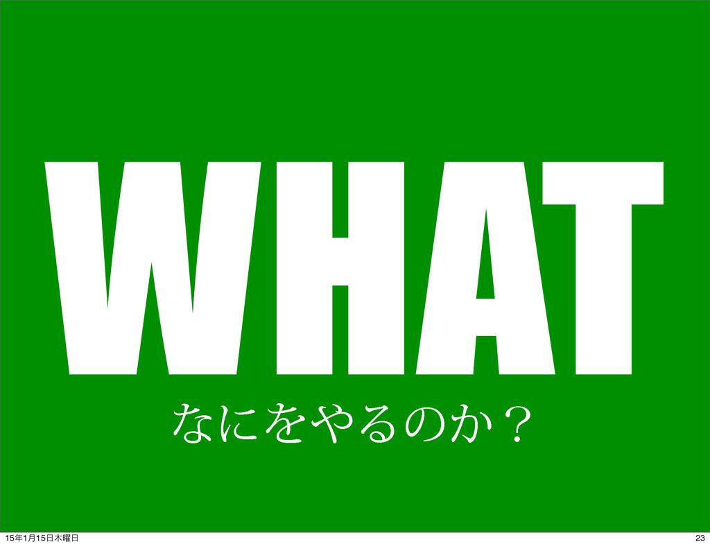 WHAT ͳʹΛΔͷ͔ʁ 23 151݄15༵