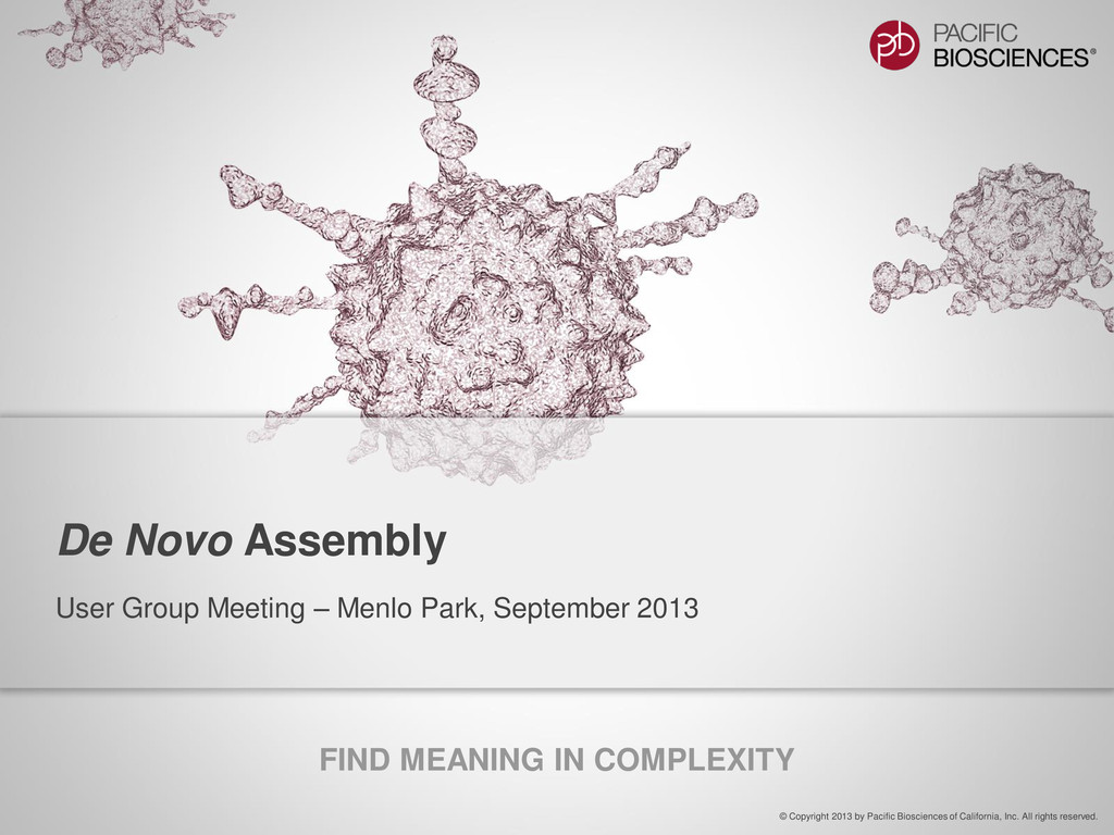 FIND MEANING IN COMPLEXITY © Copyright 2013 by ...