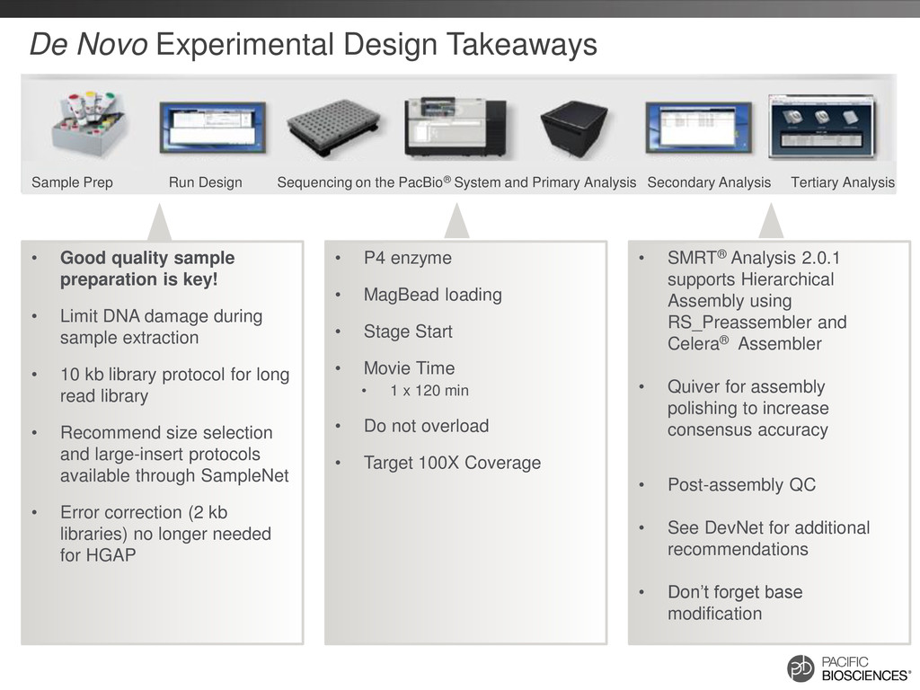 De Novo Experimental Design Takeaways • P4 enzy...