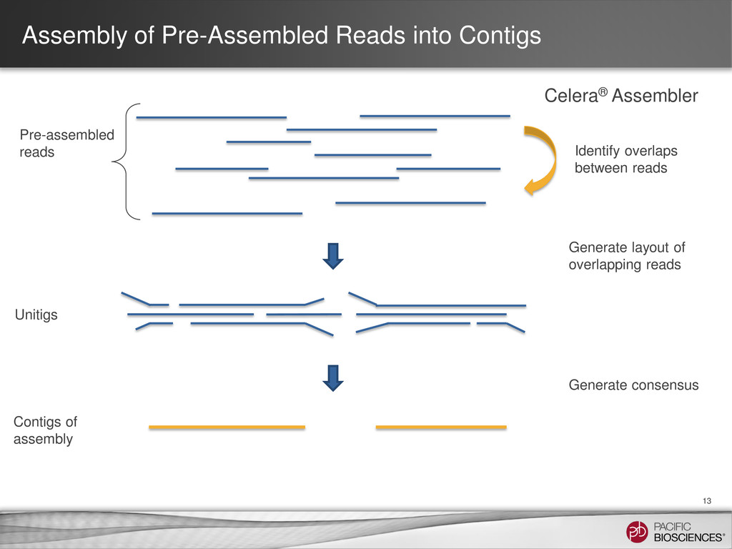 Assembly of Pre-Assembled Reads into Contigs 13...
