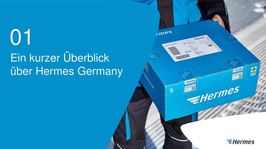 Ein kurzer Überblick über Hermes Germany 01