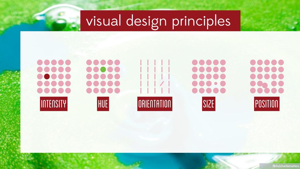 visual design principles Intensity HUE Orientat...