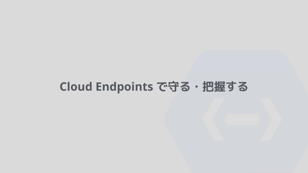 Cloud Endpoints で守る・把握する