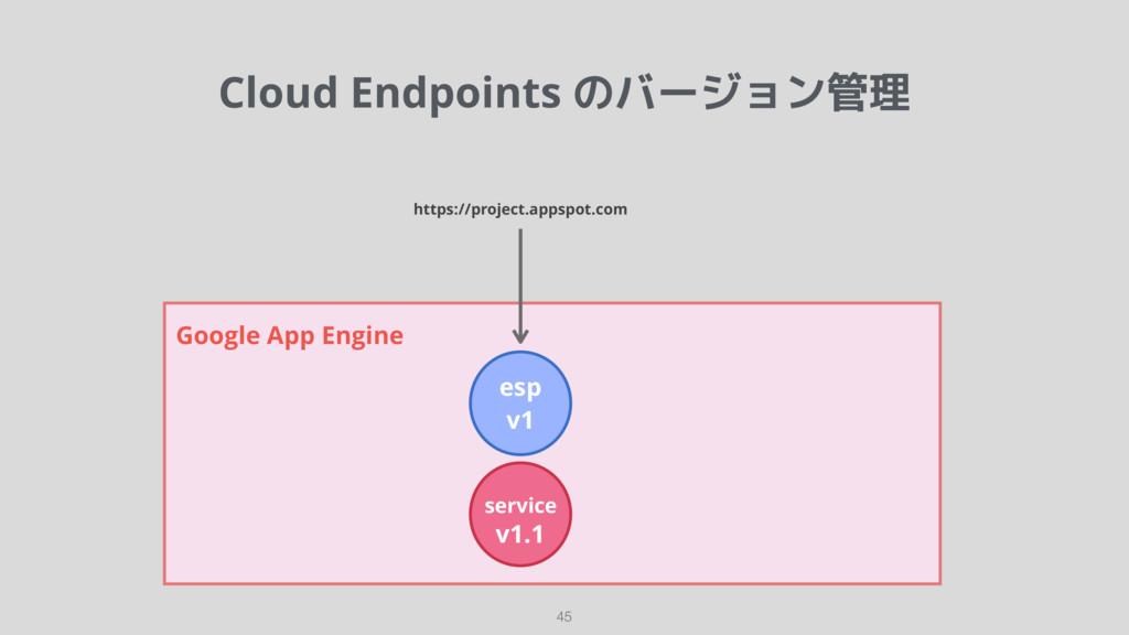 Cloud Endpoints のバージョン管理 45 Google App Engine e...