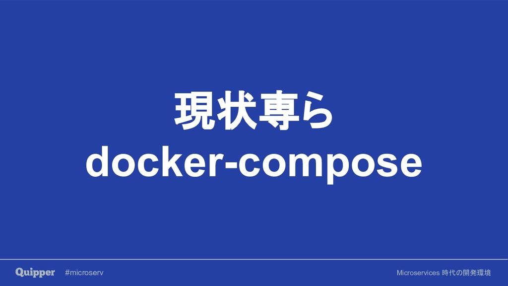 #microserv Microservices 時代の開発環境 現状専ら docker-co...
