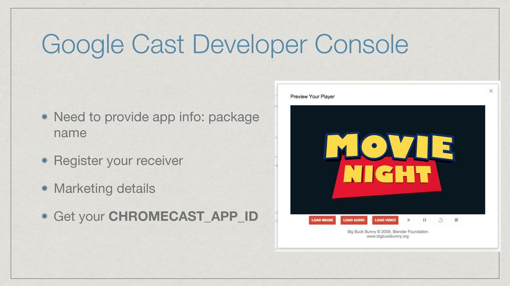 Google Cast Developer Console Need to provide a...
