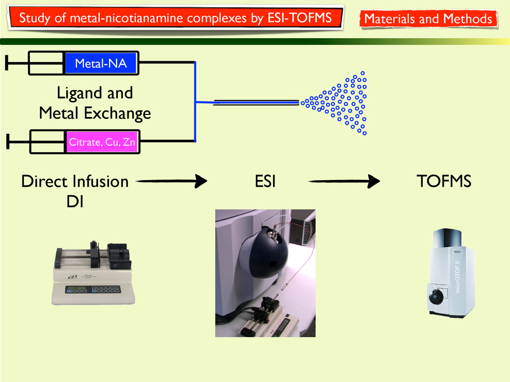 Study of metal-nicotianamine complexes by ESI-T...