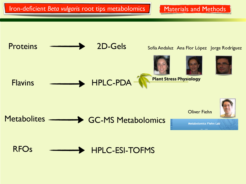 Metabolites GC-MS Metabolomics Oliver Fiehn Pro...