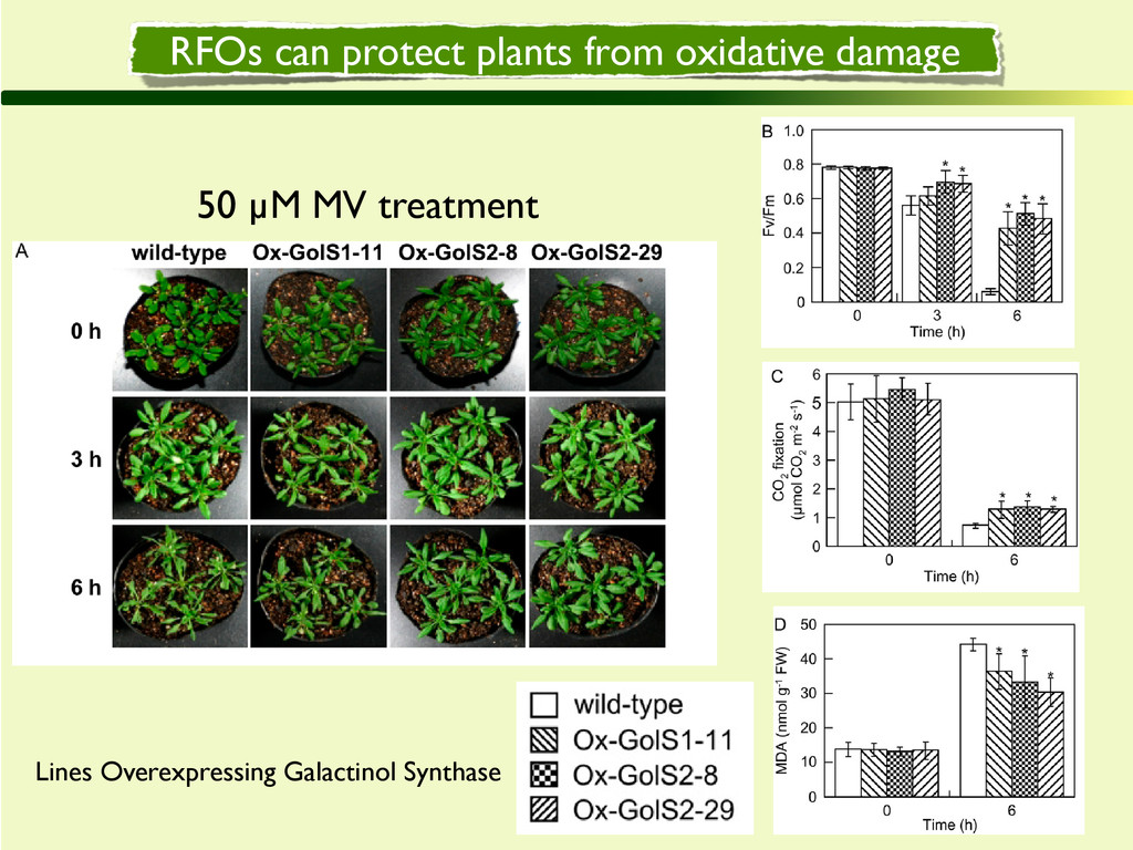 RFOs can protect plants from oxidative damage 5...