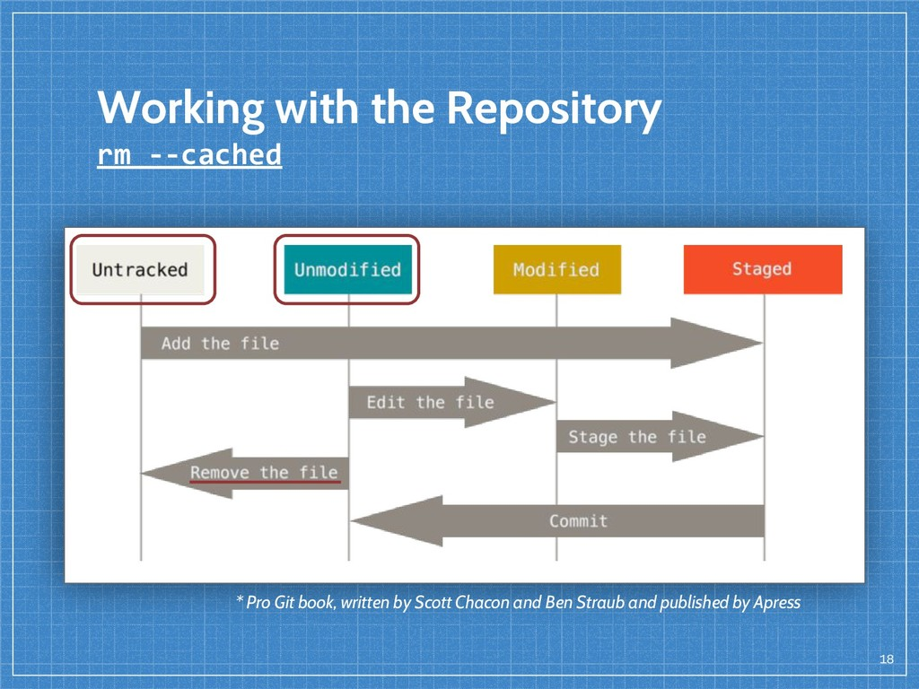 18 Working with the Repository rm --cached * Pr...