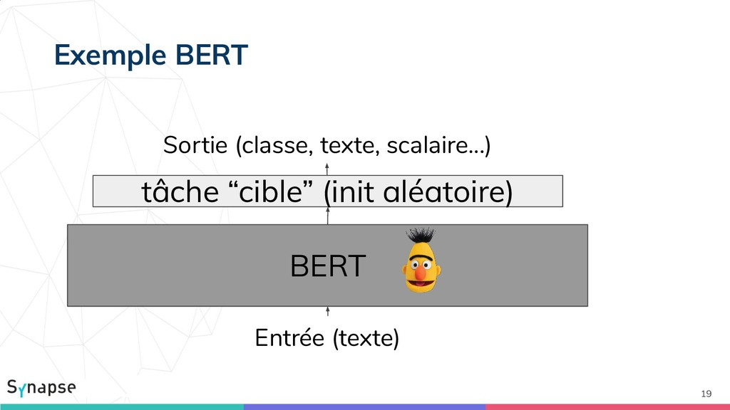 19 BERT Sortie (classe, texte, scalaire...) Ent...