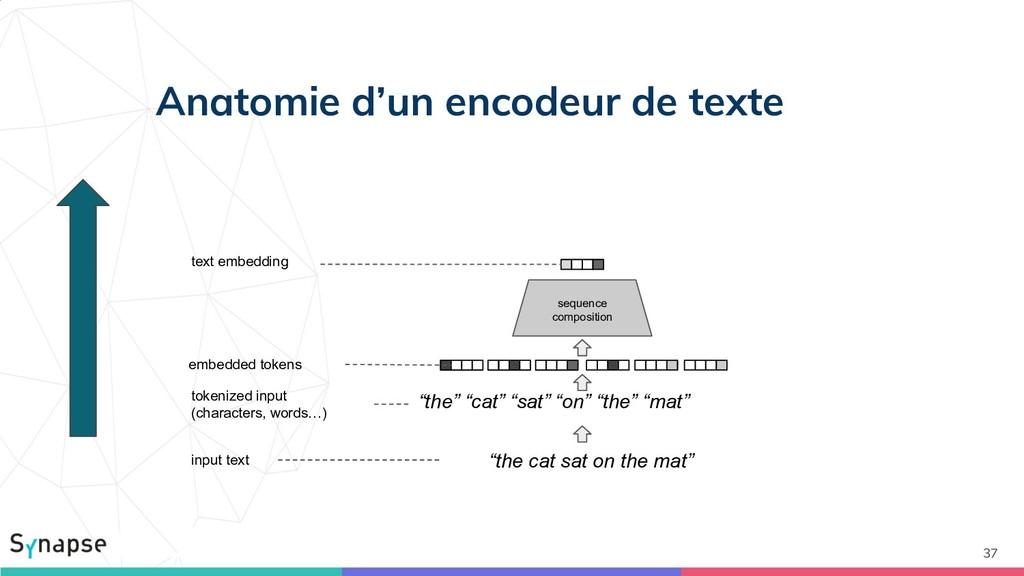 Anatomie d'un encodeur de texte 37 input text t...