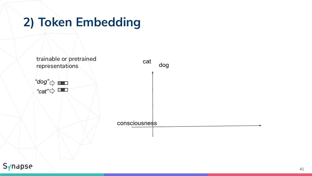 "2) Token Embedding 41 cat dog consciousness ""do..."