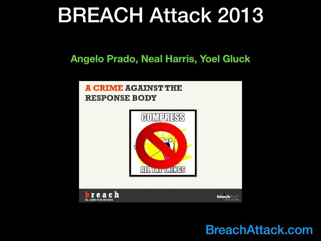BREACH Attack 2013 BreachAttack.com Angelo Prad...