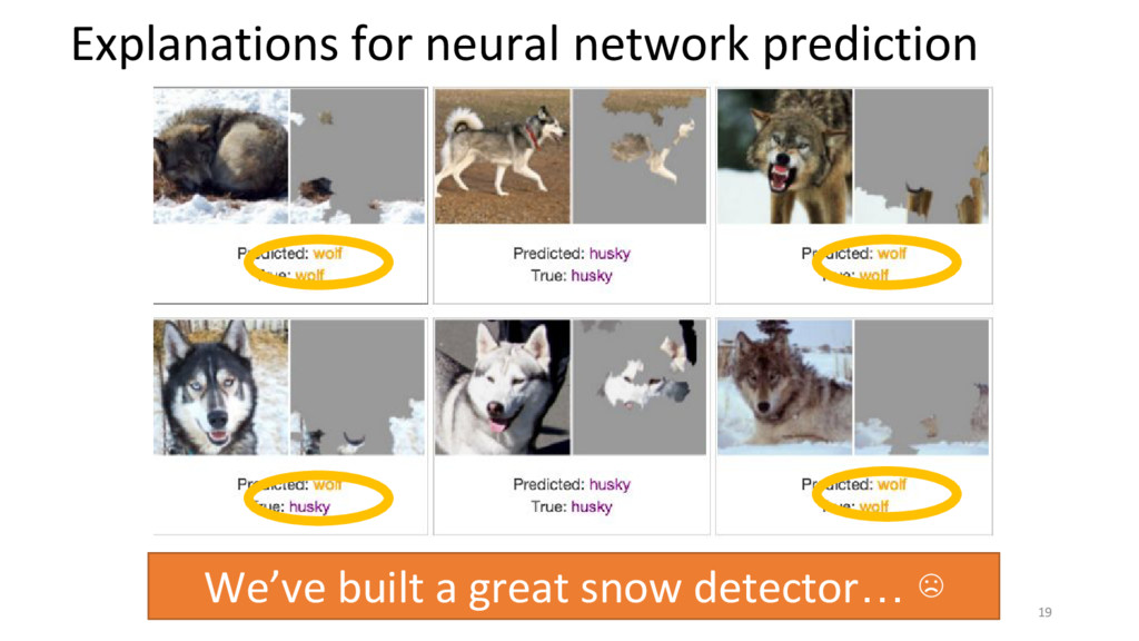 19 Explanations for neural network prediction W...