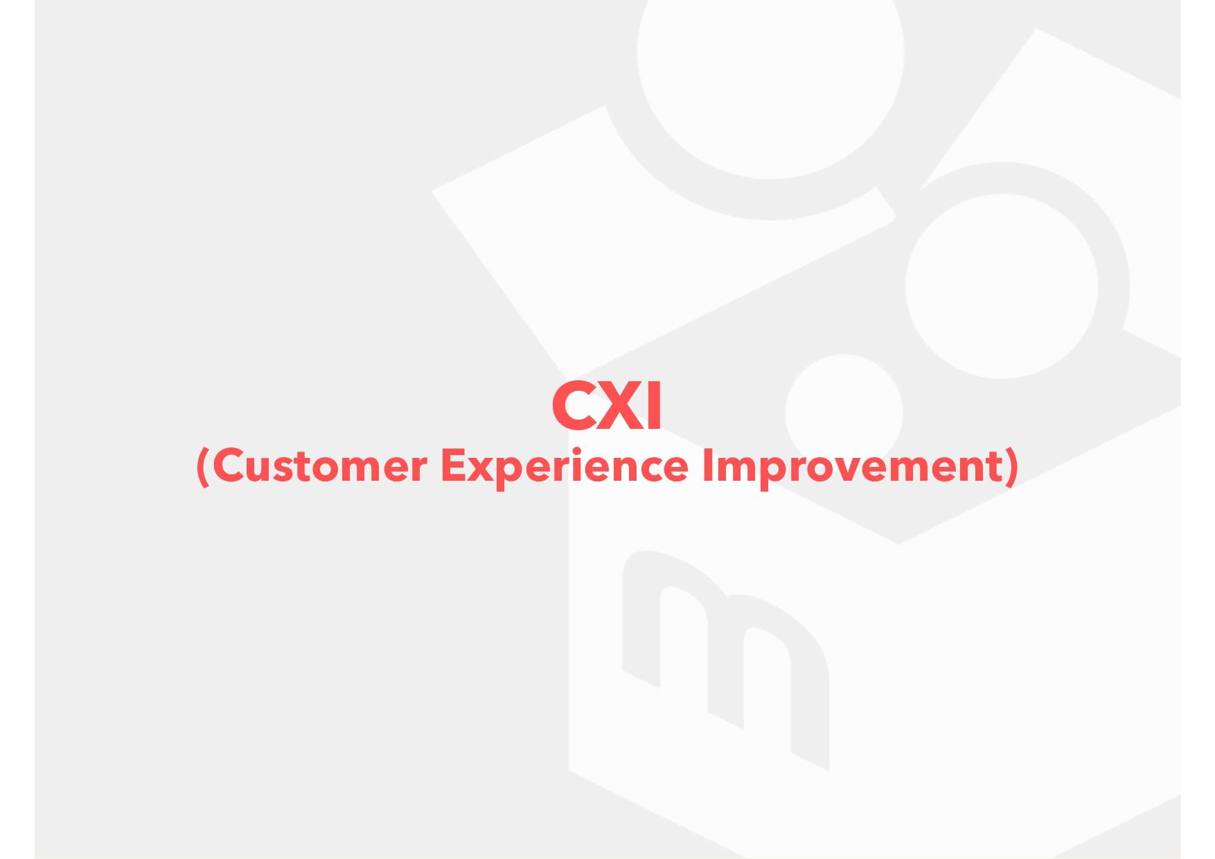 CXI (Customer Experience Improvement)