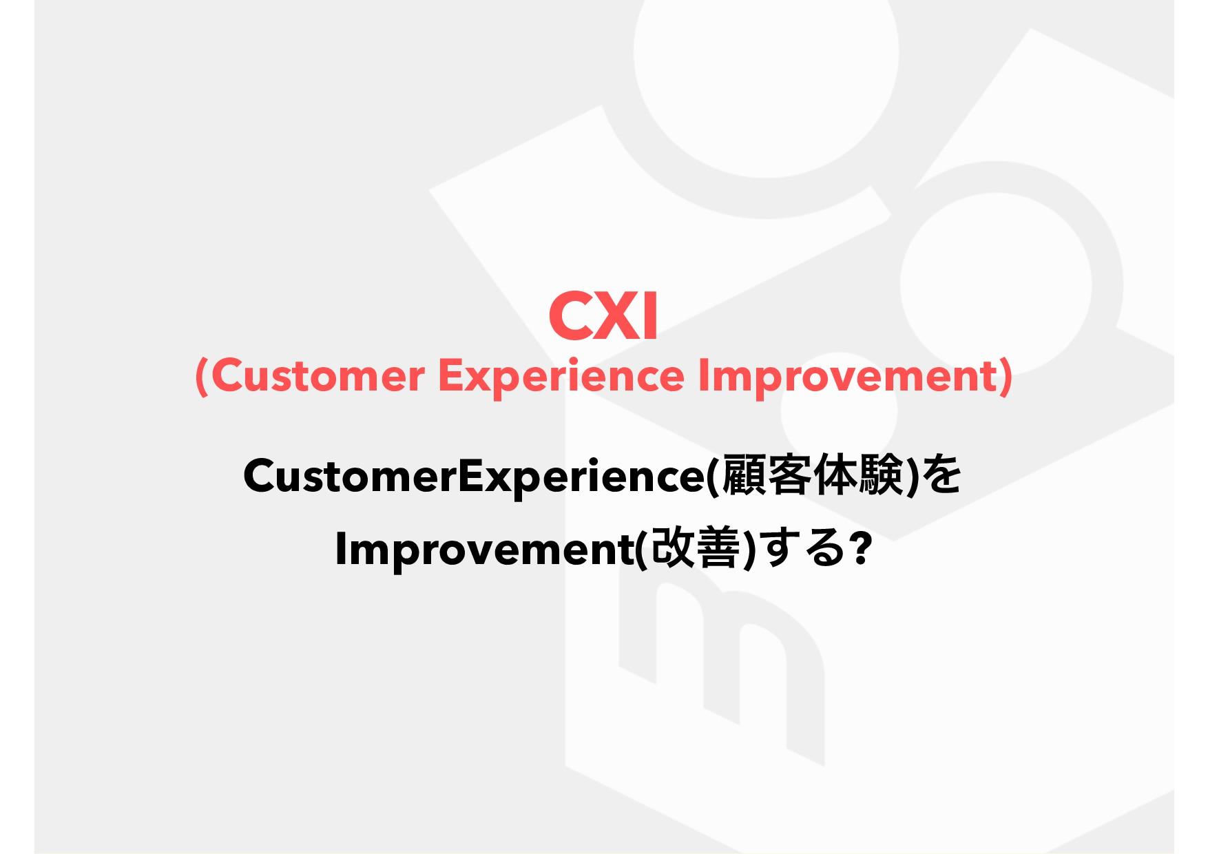 CXI (Customer Experience Improvement) Custome...