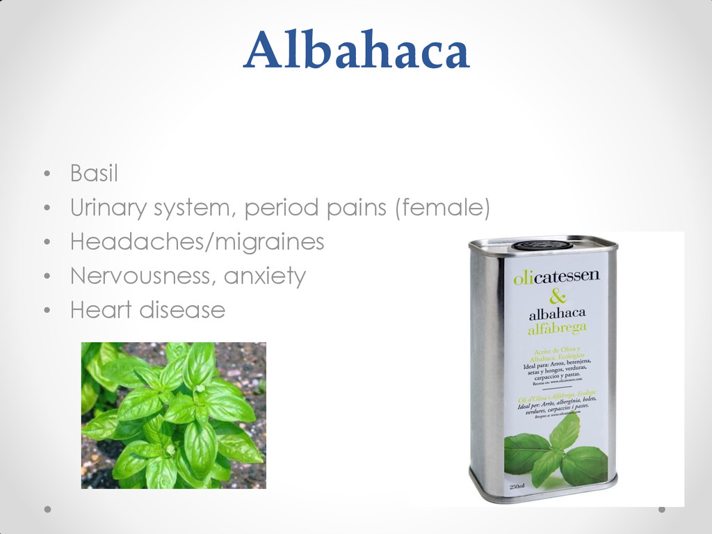 Albahaca • Basil • Urinary system, period pains...