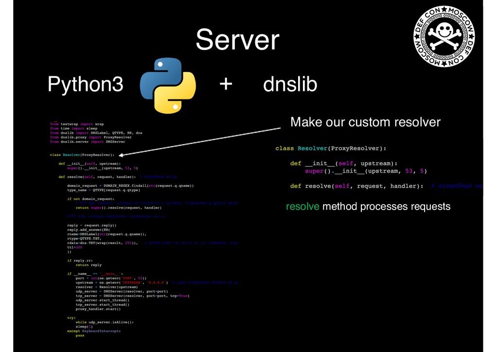 Server Python3 + dnslib Make our custom resolve...