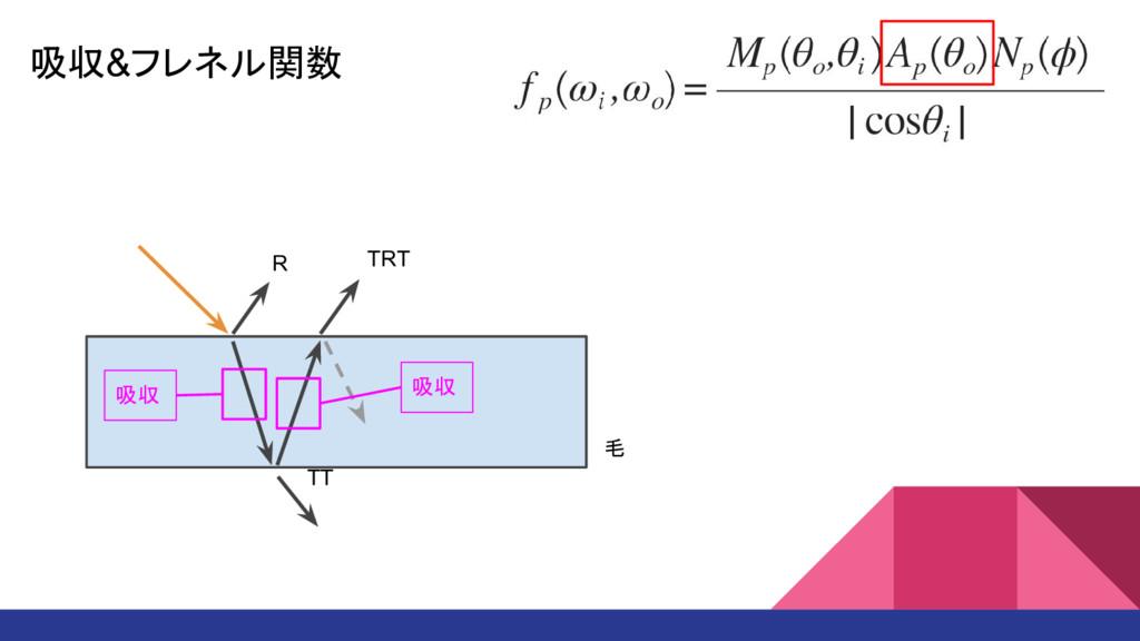吸収&フレネル関数 R TT TRT 吸収 吸収 毛