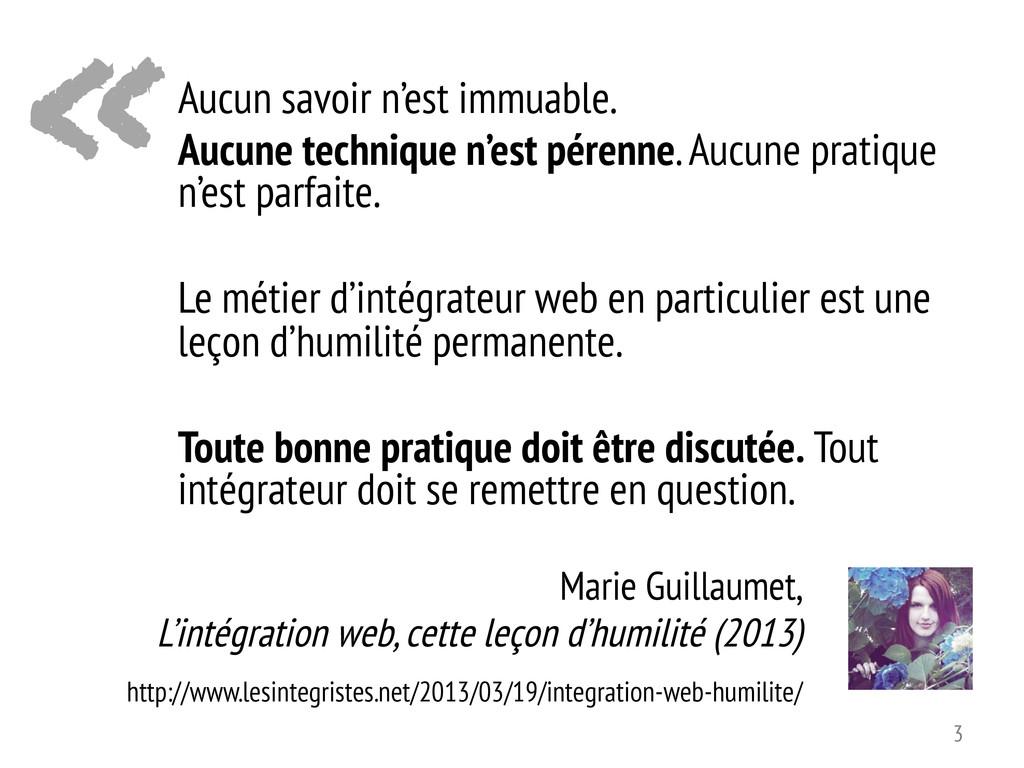 « Marie Guillaumet, L'intégration web, cette le...