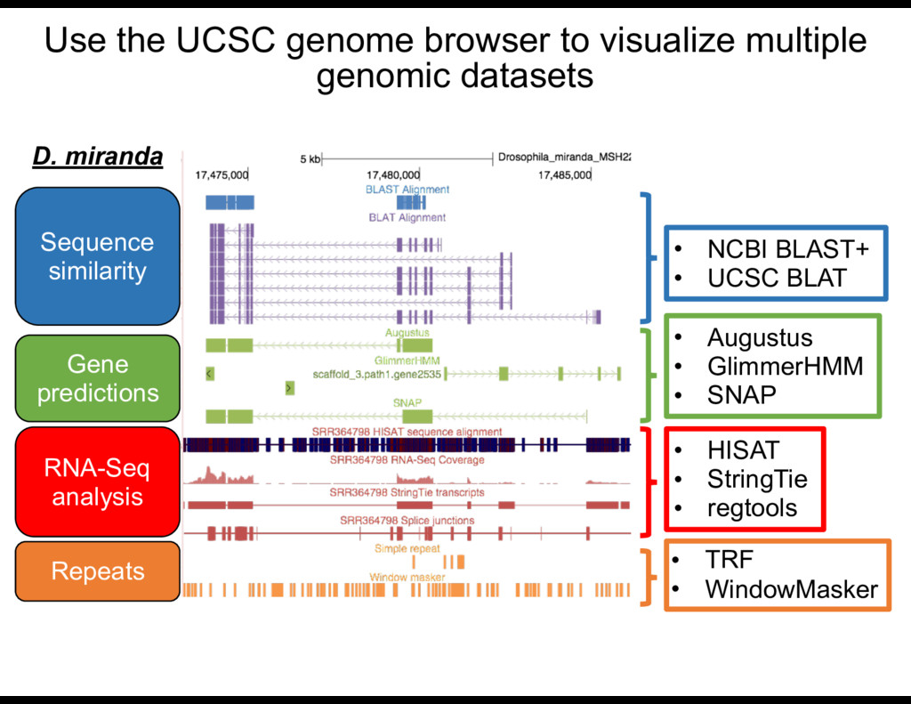 Use the UCSC genome browser to visualize multip...