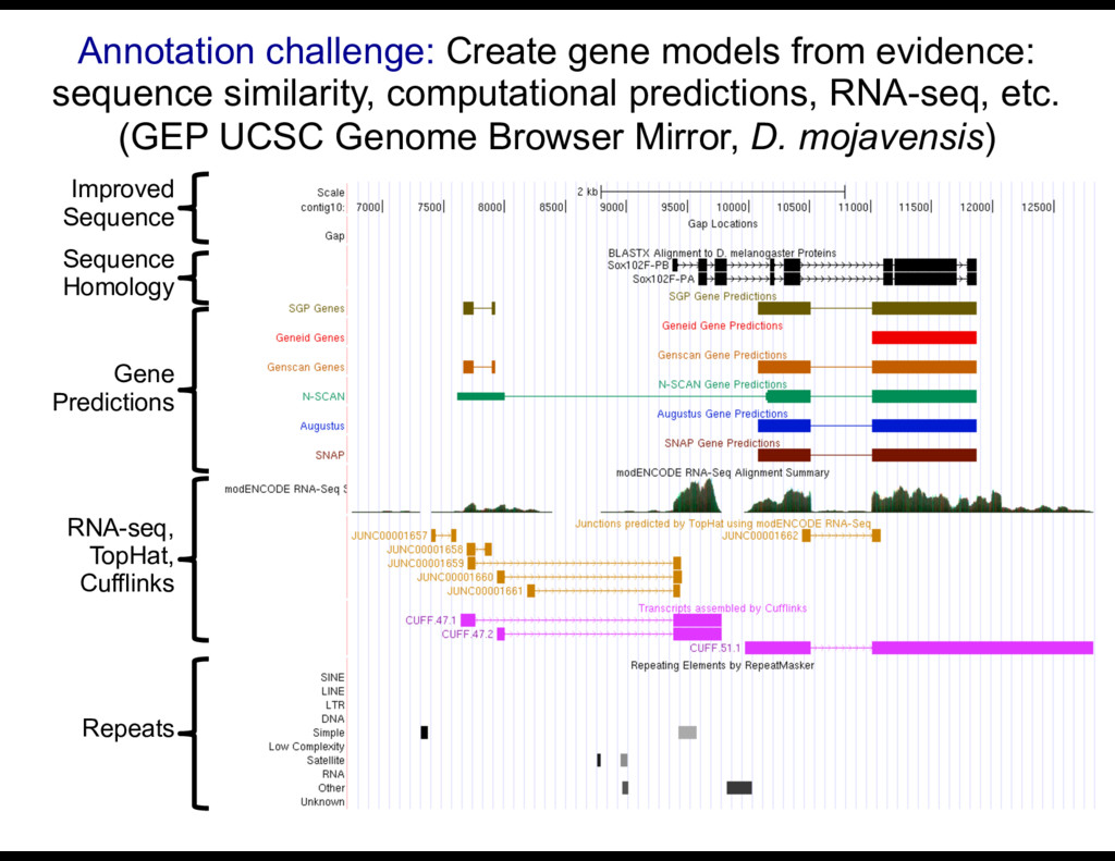 Annotation challenge: Create gene models from e...