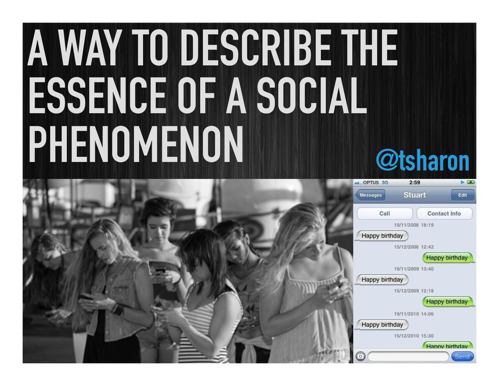 A WAY TO DESCRIBE THE ESSENCE OF A SOCIAL PHENO...