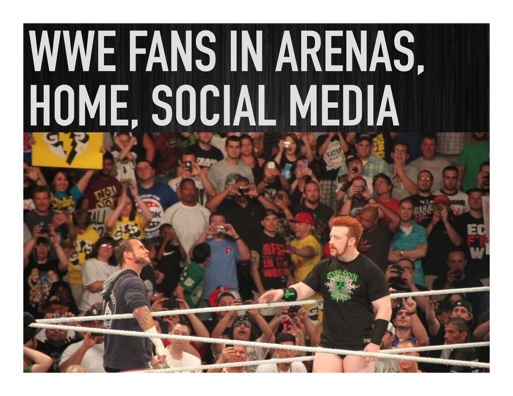 WWE FANS IN ARENAS, HOME, SOCIAL MEDIA