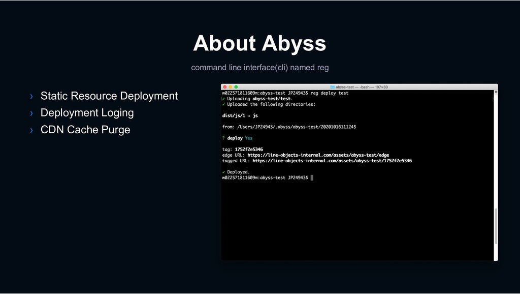 About Abyss command line interface(cli) named r...