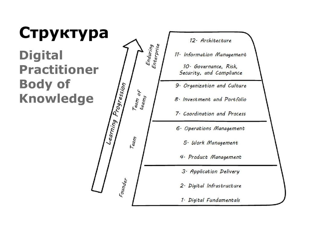 Структура Digital Practitioner Body of Knowledge